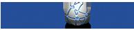 bluefacemedia-logo